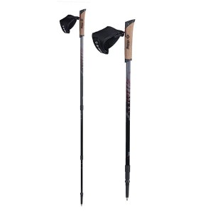 Kije Nordic Walking VIKING Kube